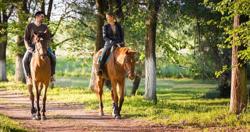 Verliefd stel te paard op de Veluwe