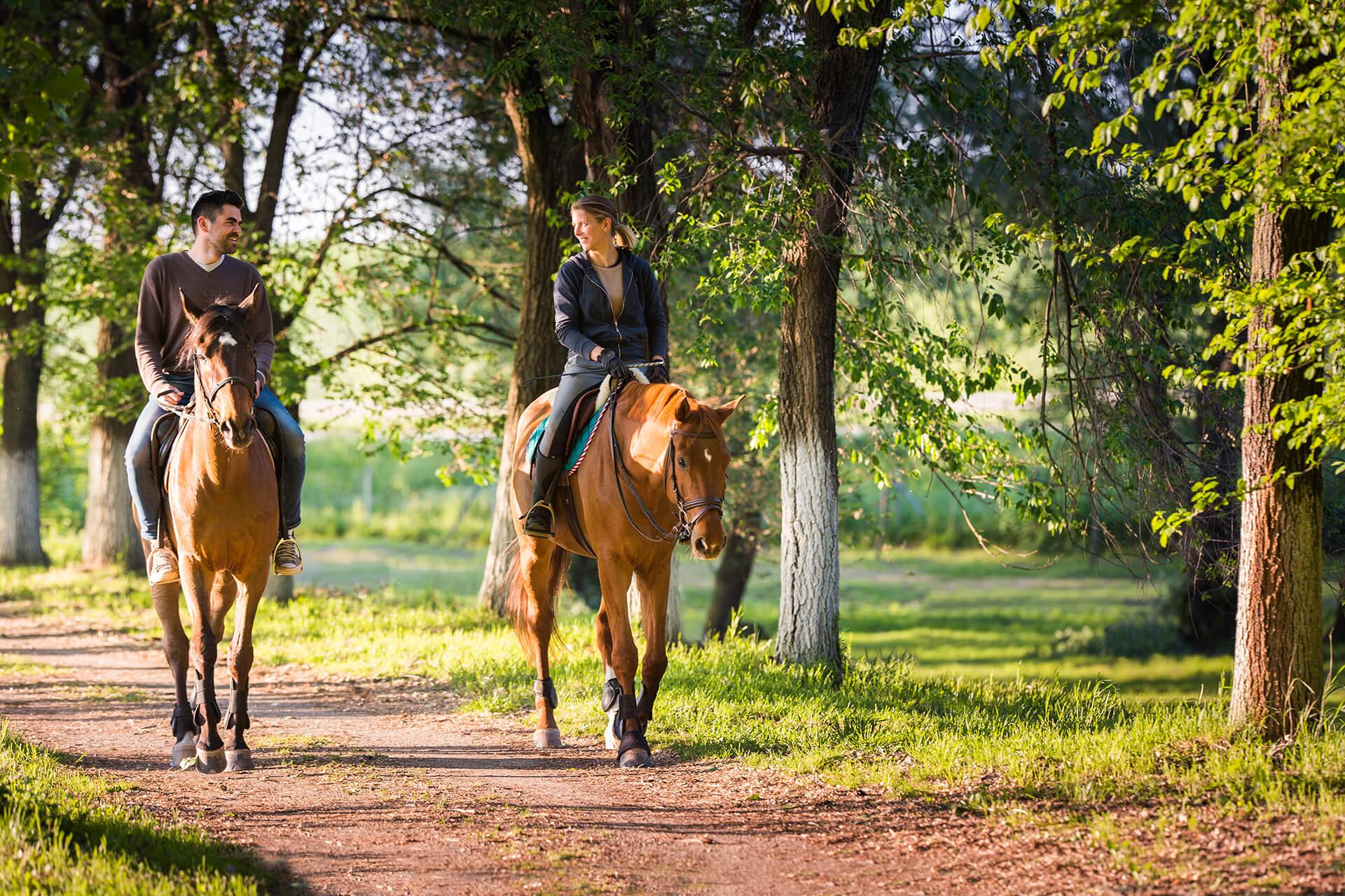 Verliefd stel paardrijden op de Veluwe